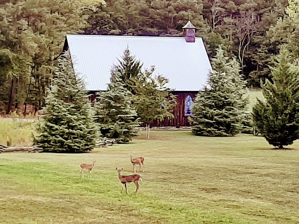 The deer in front of the chapel